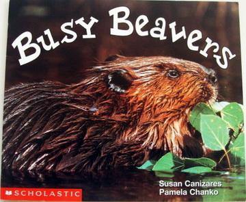 หนังสือเด็ก  Busy Beavers
