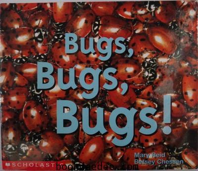นิทานเด็ก Science Reader Bugs Bugs Bugs