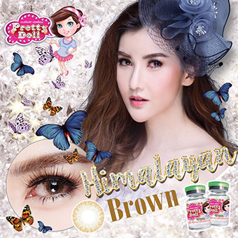 Bigeye Pretty Doll Himalayan Brown (0.00) ราคาถูกๆ W.38 รหัส PT118
