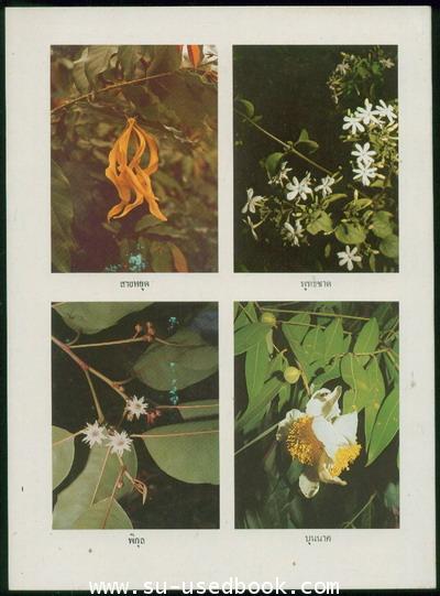 ดอกไม้ในวรรณคดี 1