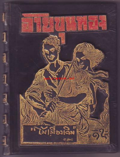 หนังสือปกสวย อ้ายขุนทอง ผลงานของ ไม้ เมืองเดิม