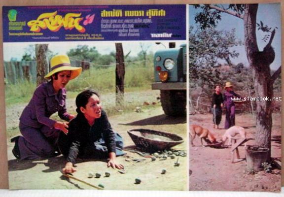 ล็อบบี้การ์ด หนังเรื่อง สายฝน รวม 16 ใบ 8