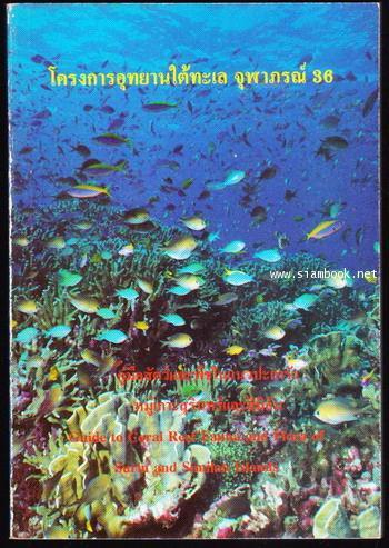 คู่มือสัตว์และพืชในแนวปะการัง หมู่เกาะสุรินทร์และสิมิลัน