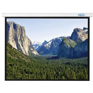 HDTV Format Electric Projector Screen, 54x96quot;, Matte White Fabric