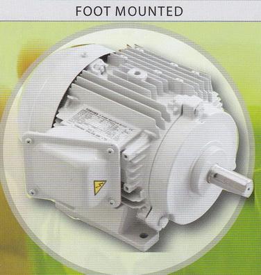 TOSHIBA Motor มอเตอร์โตชิบา แบบขาตั้ง 3000 รอบ 5 แรงม้า รุ่น 2T5HPL,H