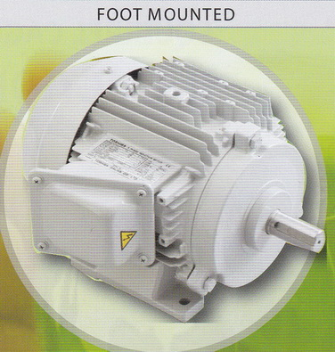TOSHIBA Motor มอเตอร์โตชิบา แบบขาตั้ง 3000 รอบ 30 แรงม้า รุ่น 2T30HPH