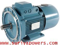 มอเตอร์ Eletrim 1 HP 4 Pole B5
