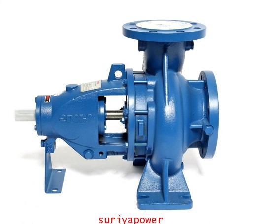 ปั๊มน้ำเพลาลอย POLO Centrifugal Pump รุ่น EA65/32