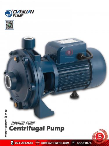 Dayuan Pump ปั๊มน้ำหอยโข่ง ปั๊มน้ำไดเจน รุ่น DSm-50 (220V)