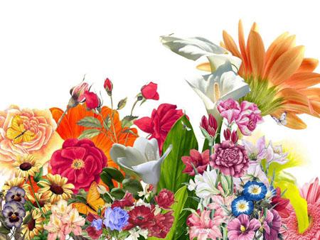 หัวน้ำหอม sweet floral
