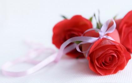 หัวน้ำหอม Oriental rose