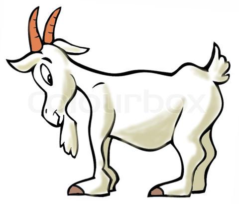 หัวน้ำหอม goat milk