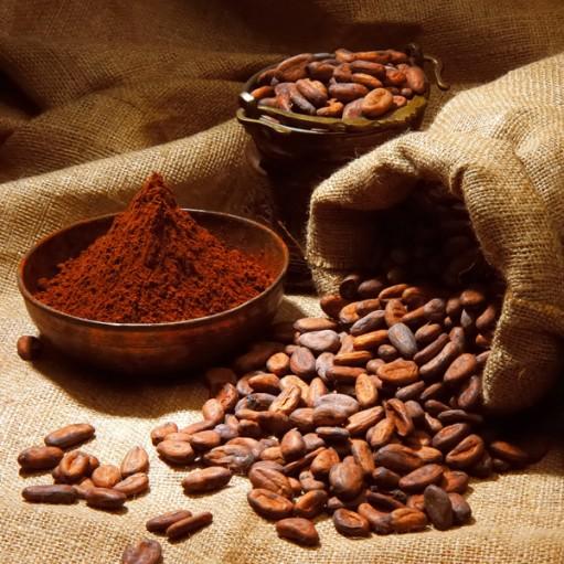 ผงสครับ cocoa