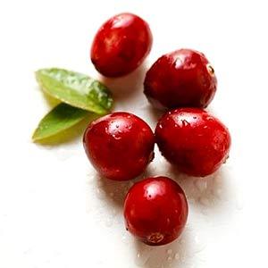 ผงสครับ Cranberry