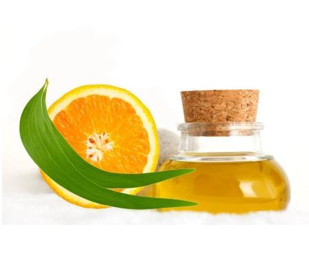 Orange Oil (ส้ม)