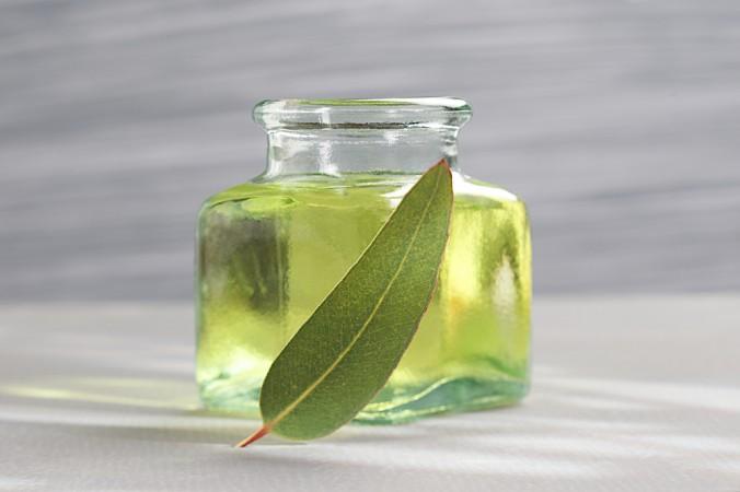 Eucalyptus Oil 450ml.