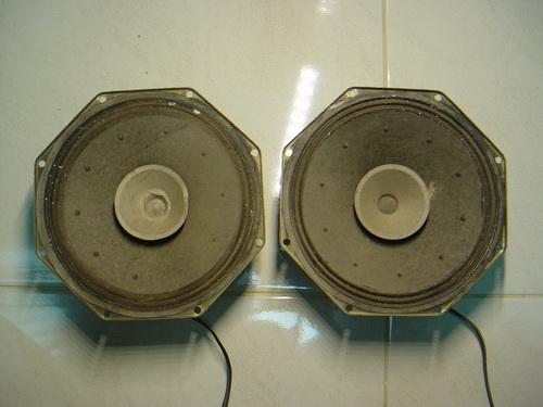 ลำโพง Philips Full ranges 10 นิ้ว Made in Belgium
