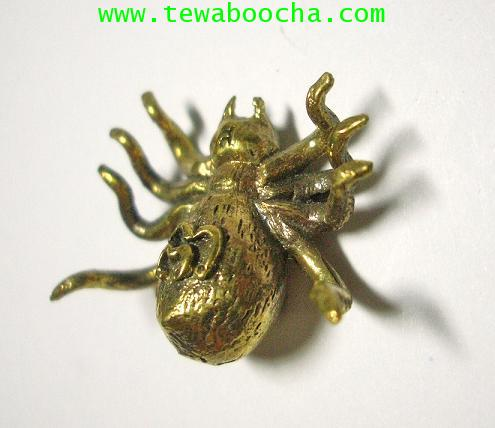 แมงมุมดักทรัพย์มหาลาภ เนื้อทองเหลือง ขนาด 2.5 x2.5 ซม. 2