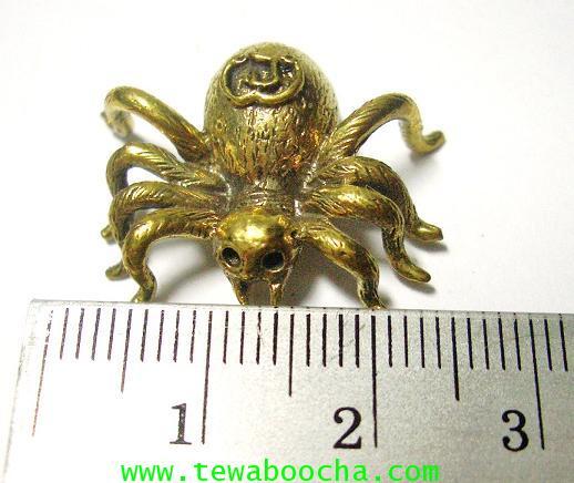 แมงมุมดักทรัพย์มหาลาภ เนื้อทองเหลือง ขนาด 2.5 x2.5 ซม. 3