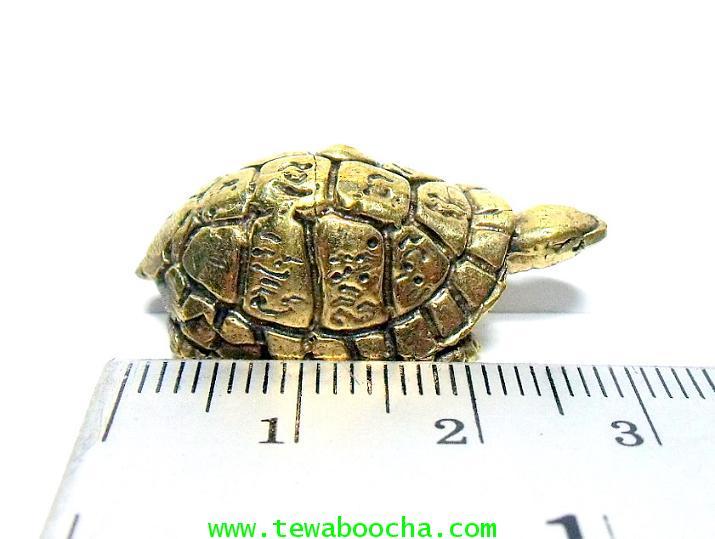 พญาเต่าเรือนมงคล ช่วยให้พ้นเคราะห์ให้เงินทองมาง่ายมีกินไม่มีอด :เนื้อทองเหลืองสูง1ซม.ตัวยาว2.5ซม. 6