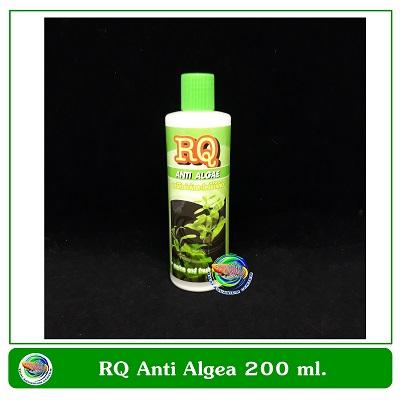 RQ Anti Algae อาร์คิว แอนตี้ แอลจี กำจัดตะไคร่น้ำเขียว 200 ml.