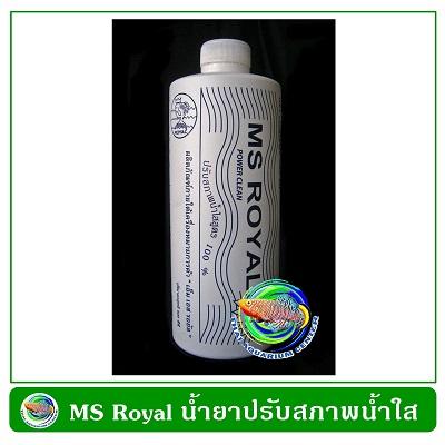 MS Royal 200 cc.