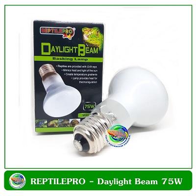REPTILEPRO DAYLIGHT BEAM BASKING LAMP 75W