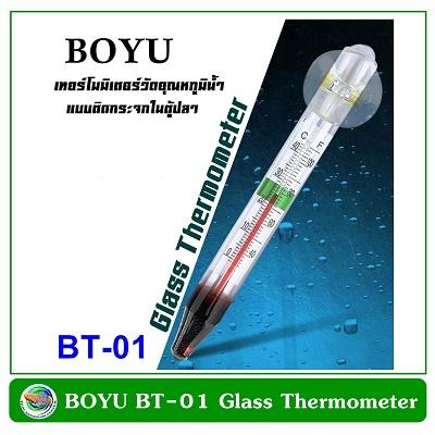 Boyu Thermometer BT-01