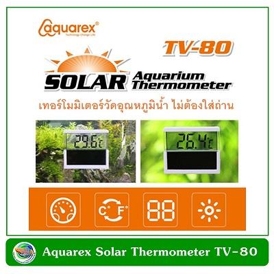 Aquarex TV-80 Solar Aquarium Thermometer เครื่องวัดอุณหภูมิแบบติดข้างตู้ปลา ไม่ใช้ไฟฟ้า