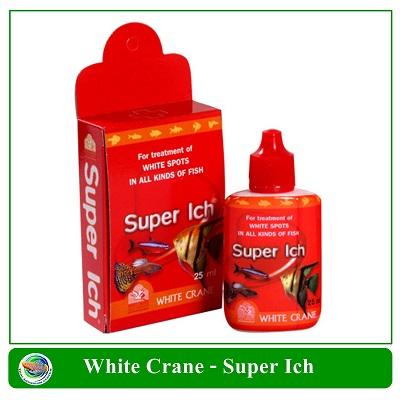 ซุปเปอร์อิ๊ค (Super Ich) 25 cc