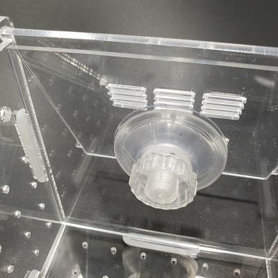 กล่องอคริลิคแยกเลี้ยงปลา กุ้ง ในตู้ปลาใหญ่ แบบจุกยาง ขนาด 2 ช่อง Acrylic Aquarium Fish Tank Box 4
