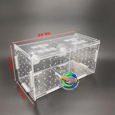 กล่องอคริลิคแยกเลี้ยงปลา กุ้ง ในตู้ปลาใหญ่ แบบจุกยาง ขนาด 2 ช่อง Acrylic Aquarium Fish Tank Box 1