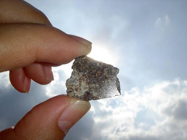 Stone Meteorite NWA 869 Chondrite (4.9 g.) 1