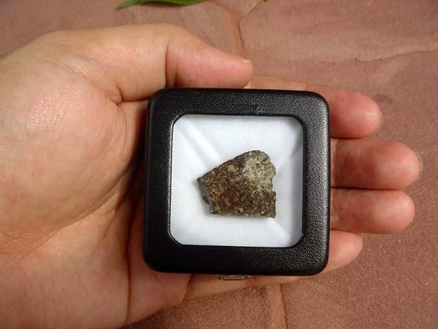 Stone Meteorite NWA 869 Chondrite (4.9 g.) 4