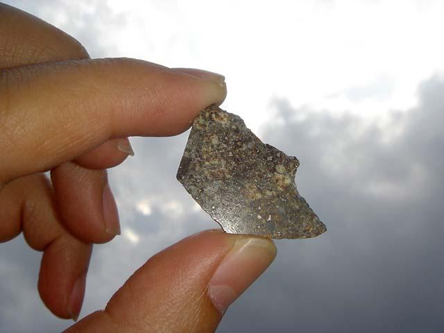 Stone Meteorite NWA 869 Chondrite (5.3 g.)