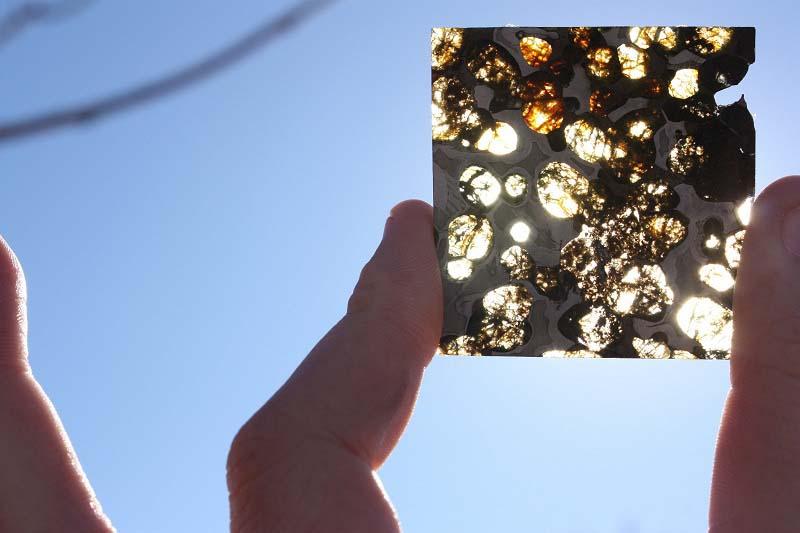 Stony Iron Meteorite - Pallasite (13.1 g)
