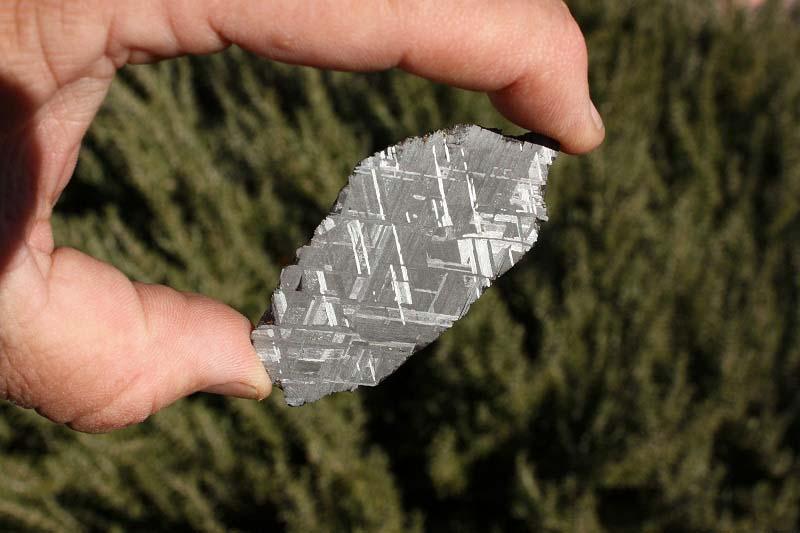 Muonionalusta meteorite etched end cut 76 grams