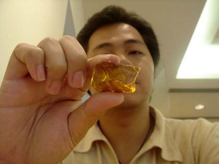 แมลงในก้อนอำพัน (FOSSIL INSECT INCLUSION) - Series 3 4