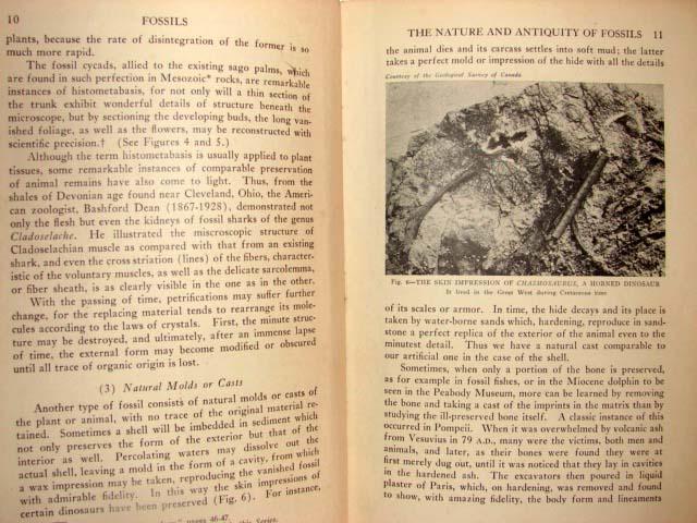 1931 FOSSILS Book PALEONTOLOGY University Society 3