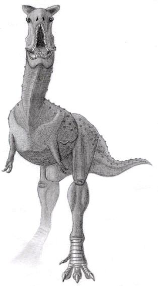 ฟอสซิลฟันไดโนเสาร์ AFRICAN TREX 7