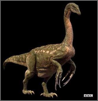 ฟอสซิลเล็บเท้าไดโนเสาร์ เทอริสิโนซอรัส (Therizinosaurus) 4