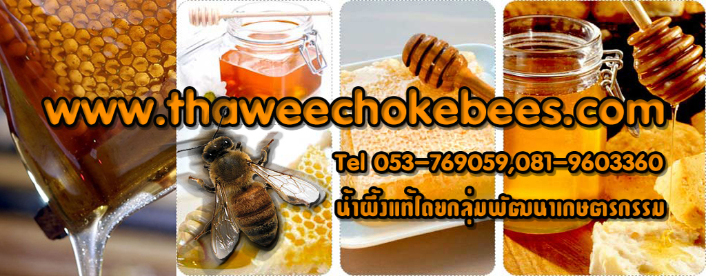 น้ำผึ้งดอกไม้ป่าแท้100%