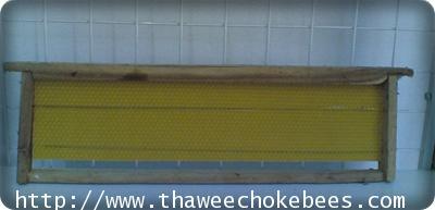 คอน แผ่น รังเทียม  สำหรับเลี้ยงผึ้งโพรง ขนาดกว้าง 10 cm ยาว 40 cm ไม่รวมค่าขนส่ง