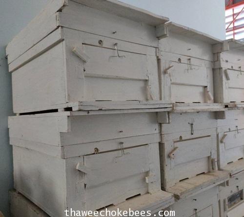ลังผึ้งขนาดใหญสำหรับเลี้ยงผึ้งพันธุ์ ความสูง 35 cm ความกว้าง 47.5 cm ความยาว 62 cm ไม่รวมค่าขนส่งค่ะ