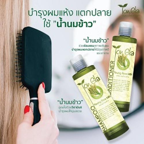 แชมพูน้ำนมข้าว Young Rice Milk Shampoo  ขนาด 260 ml