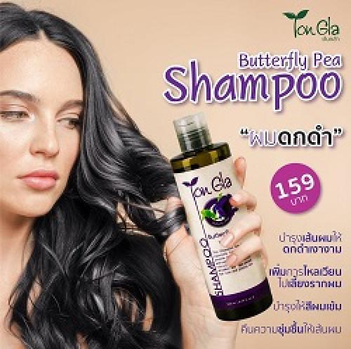 แชมพูอัญชัน (Butterfly Pea Shampoo) ขนาด 260 ml