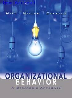 Organizational Behavior: A Strategic Approach