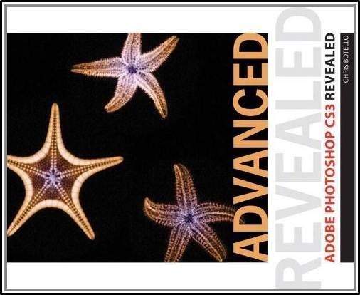 Advanced Adobe Photoshop CS3 Revealed  ISBN 9781435413269