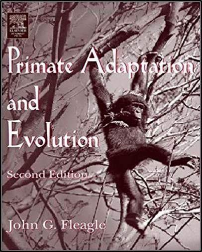 Primate Adaptation and Evolution   ISBN  9780122603419