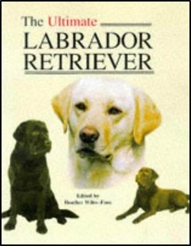 The Ultimate Labrador Retriever  ISBN  9781860540226